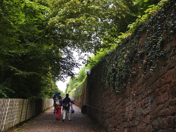 P8163346 たった1日でハイデルベルク観光!絶対に訪れたい13のオススメスポット