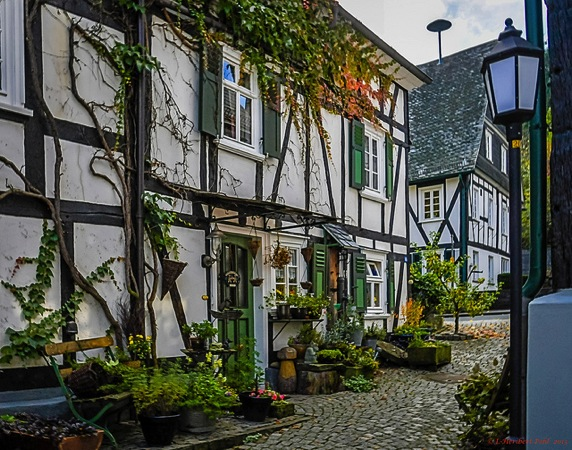 フロイデンブルクの家